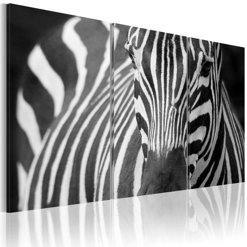 Artgeist Obraz - pani zebra