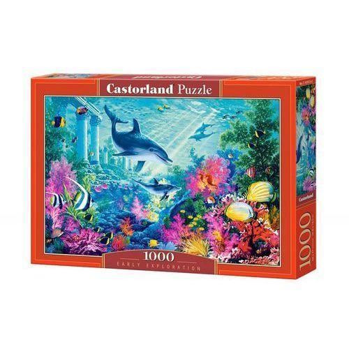 Puzzle 1000 Wczesne poszukiwania CASTOR (5904438103515)