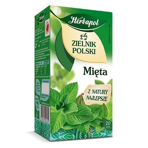 Herbapol Herbatka ziołowa zielnik polski mięta ex'20 40 g  (5900956002309)