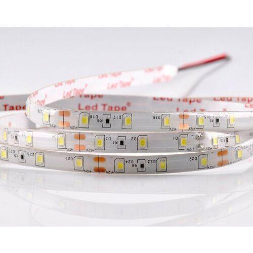 Taśma LED IP65 950 lm 5 m barwa zimna POLUX, Polux_6567762