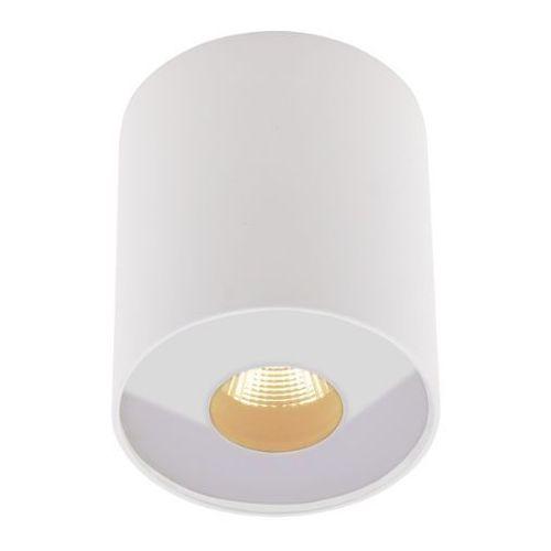 MAXlight Plazma C0152 plafon tuba lampa sufitowa oprawa spot 1x13W LED IP54 biały (5903351003308)