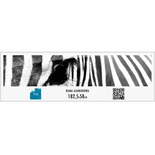 Rama aluminiowa 58x182,5 cm, kup u jednego z partnerów