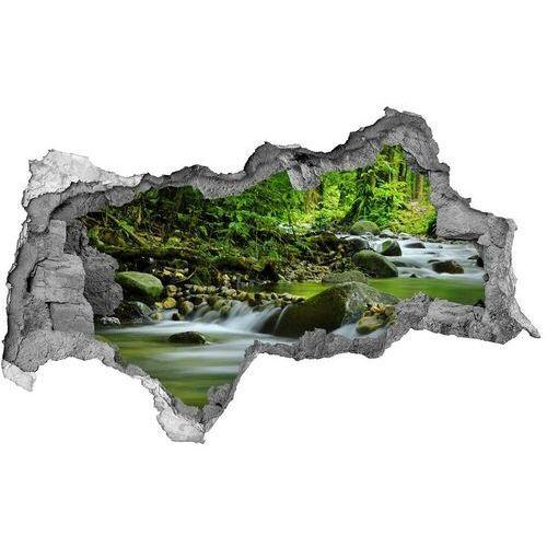 Wallmuralia.pl Dziura 3d w ścianie naklejka górski potok