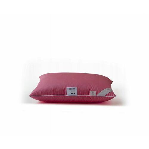 Poduszka z pierza AMZ Pierze, Kolor - różowy, Rozmiar - 50x60, Poduszka - 1-komorowa NAJLEPSZA CENA, DARMOWA DOSTAWA