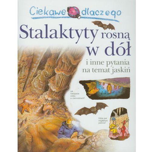 Ciekawe dlaczego Stalaktyty rosną w dół, Olesiejuk