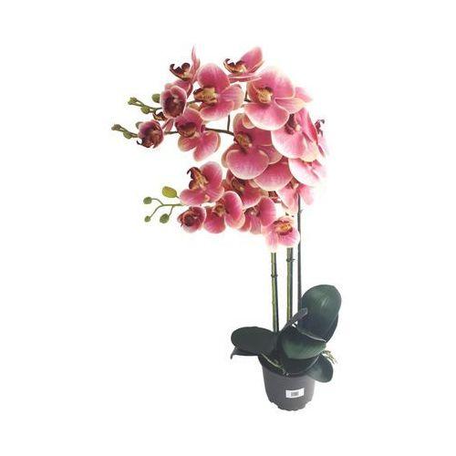 Storczyk sztuczny w doniczce 80 cm różowy 3 pędy