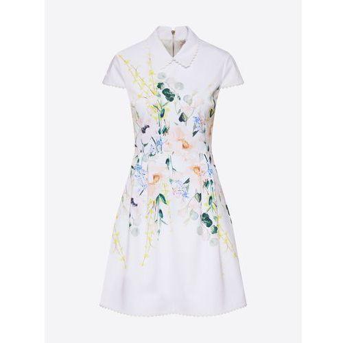 Ted Baker Sukienka 'CHARSY' biały, kolor biały