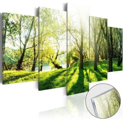 Obraz na szkle akrylowym - zielona polana [glass] marki Artgeist