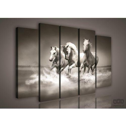 Consalnet Obraz czarno białe galopujące konie ps1085s12
