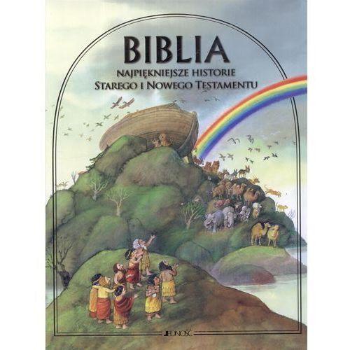 Biblia Najpiękniejsze historie Starego i Nowego Testamentu (162 str.). Najniższe ceny, najlepsze promocje w sklepach, opinie.