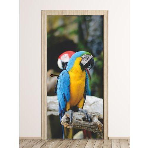 Wally - piękno dekoracji Fototapeta na drzwi papuga fp 6203