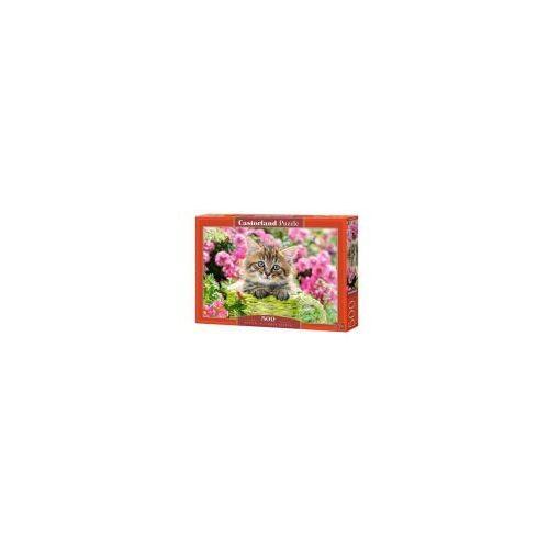 Castor Puzzle 500 elementów - kociak w kwiecistym ogrodzie - poznań, hiperszybka wysyłka od 5,99zł!
