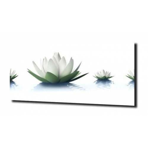 obraz na szkle Kwiat lotosu 36