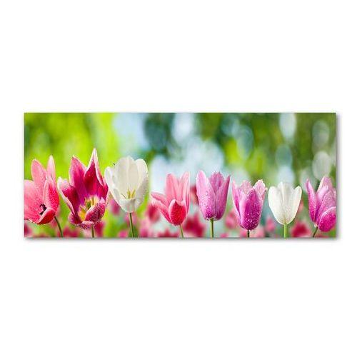 Obraz zdjęcie na ścianę akryl Tulipany