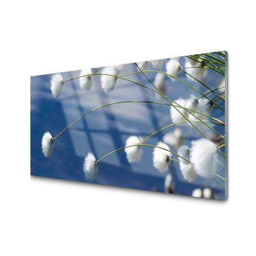 Obraz Akrylowy Kwiaty Roślina Natura Marki Tuluppl Najlepszacenka