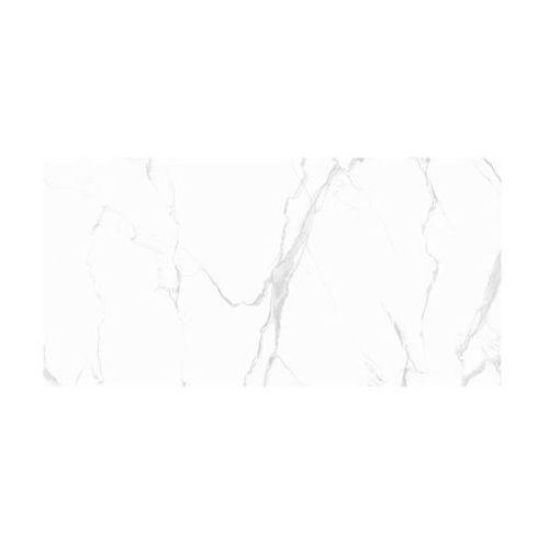 Gres szkliwiony classic carrara 59.7 x 119.7 marki Marmara