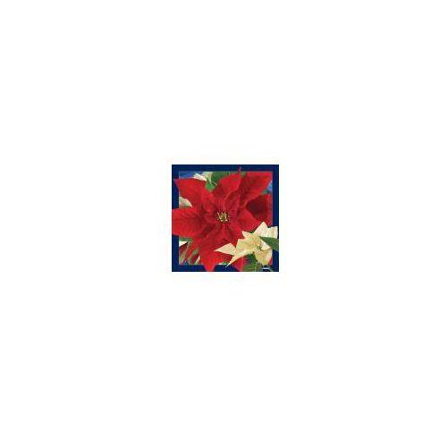Pocztówka 3D Gwiazda Betlejemska (5710431006001)