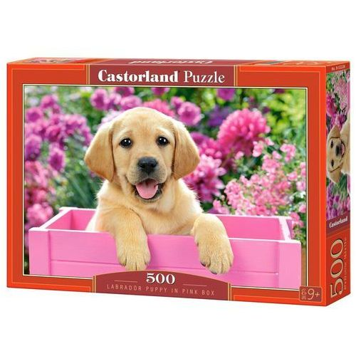 Puzzle 500 Labrador Puppy in Pink Box CASTOR, AM_5904438052226