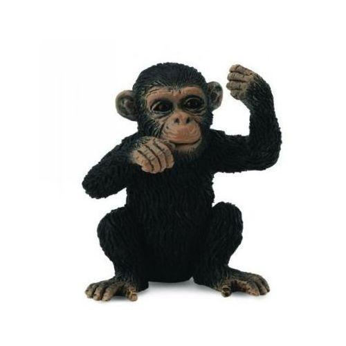 Szympans młody, myślący - figurka - COLLECTA