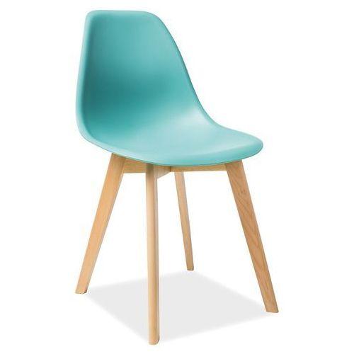Krzesło moris buk/mięta marki Signal meble