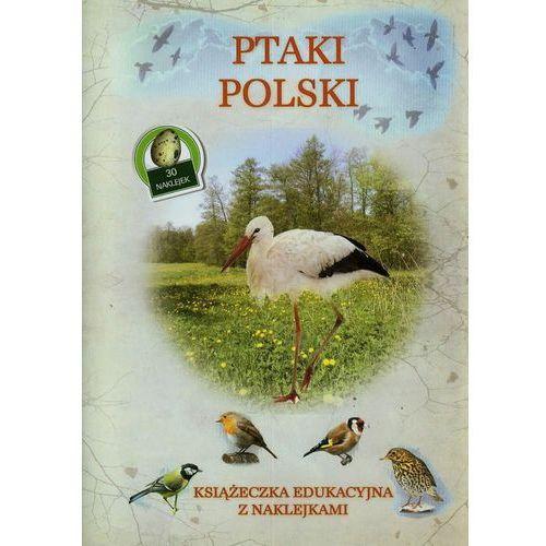 Ptaki Polski Książeczka edukacyjna z naklejkami - Tadeusz Woźniak (9788327430434)
