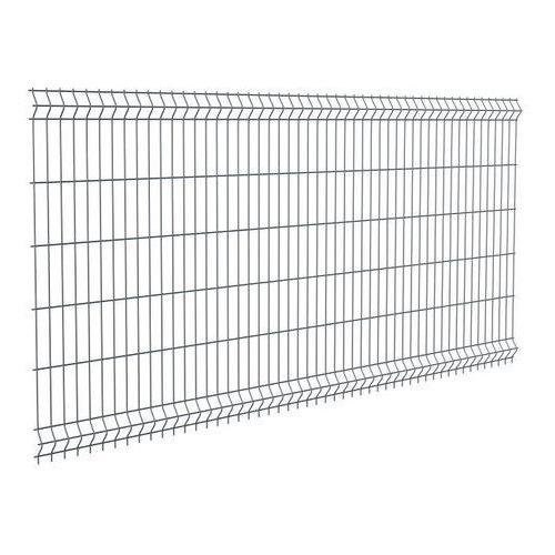 Panel ogrodzeniowy Polargos Sparta50 123 x 250 cm oczko 5 x 20 cm ocynk antracyt (5902360114753)
