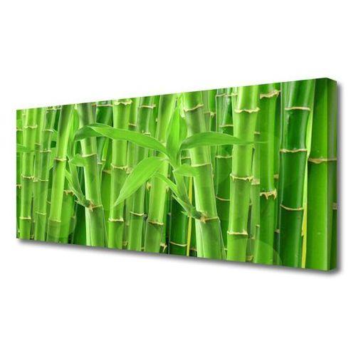 Tulup.pl Obraz na płótnie bambus łodyga kwiat roślina