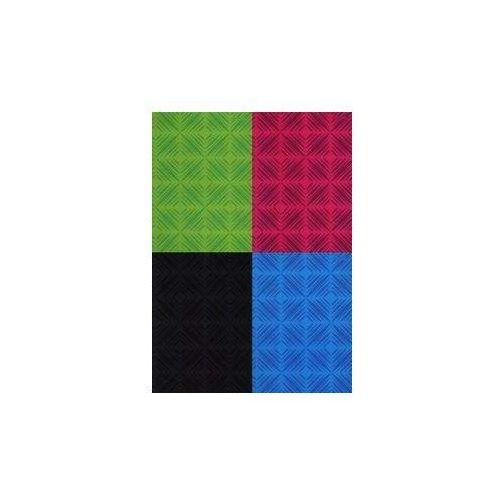 Hamelin Kołozeszyt a5 top-2000 w kratkę 80 kartek zamykany na gumkę mix