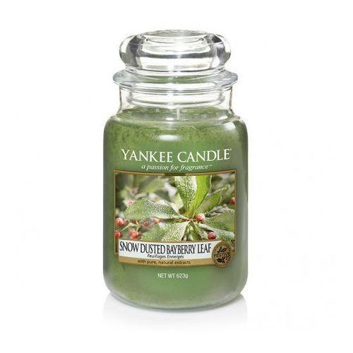 Yankee candle snow-dusted bayberry leaf duża świeca zapachowa 623g