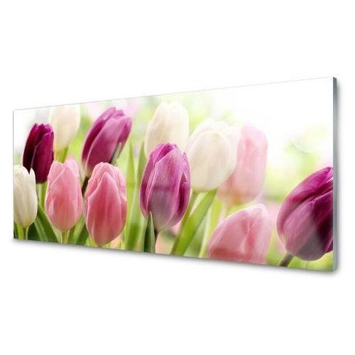 Obraz Szklany Tulipany Kwiaty Natura Łąka