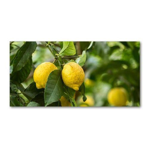 Wallmuralia.pl Foto obraz akryl cytryny na drzewie