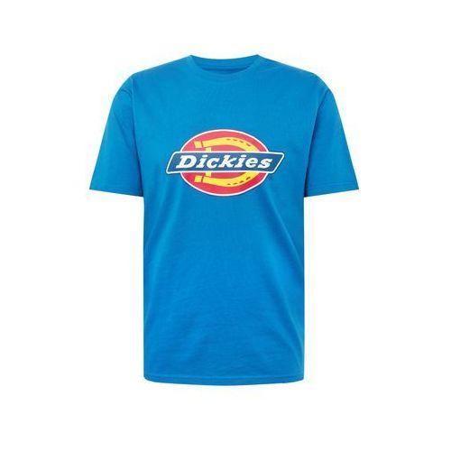 koszulka królewski błękit / mieszane kolory, Dickies, XS-XXL
