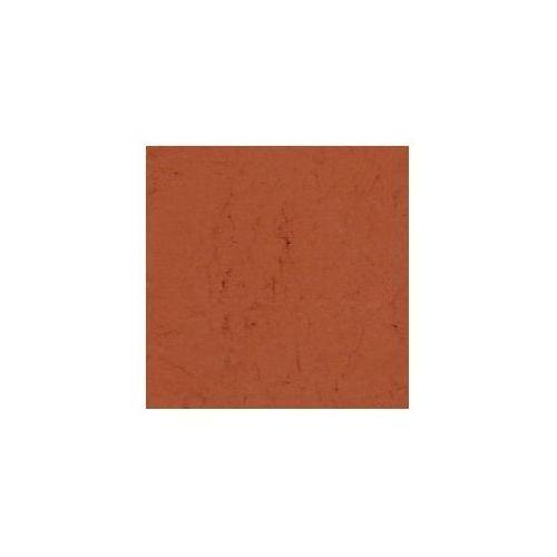 Retro image Pigment kremer - ochra brunatna, niemiecka 40231