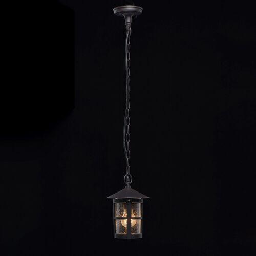 Lampa wisząca zewnętrzna Telaur DeMarkt Street (806011001) (4250369177660)