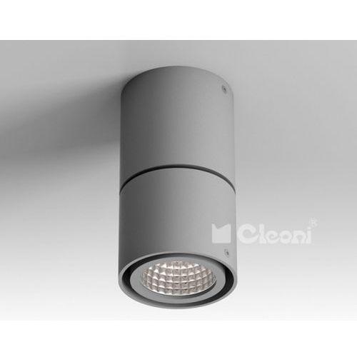 Lampa sufitowa tuz h4sh, t019h4sh+ marki Cleoni