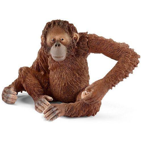 Orangutan - Samica 14775 - Schleich