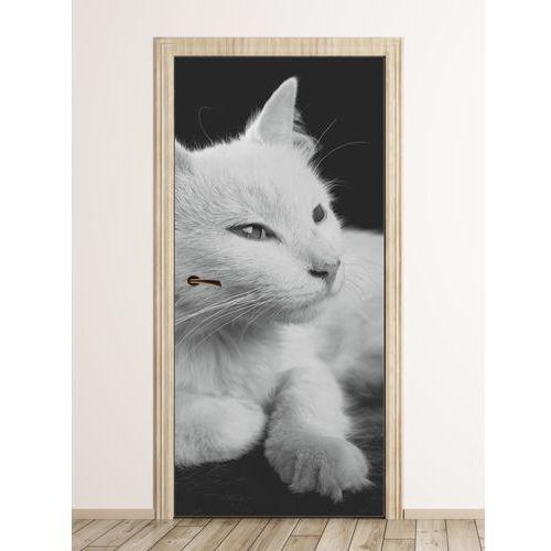 Wally - piękno dekoracji Fototapeta na drzwi biały kot fp 6169