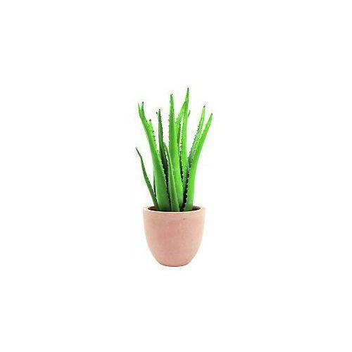 Europalms Aloe vera plant, 63cm, Sztuczna roślina