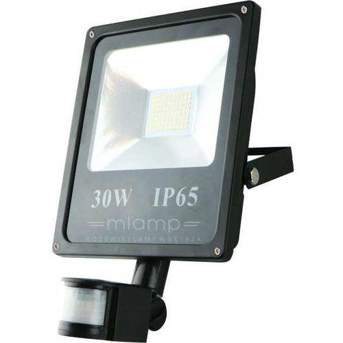 Naświetlacz LED 30 W, MILA 983