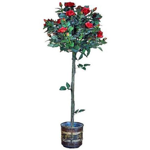 Greentree Sztuczne drzewo róża czerwona kwiaty drzewko