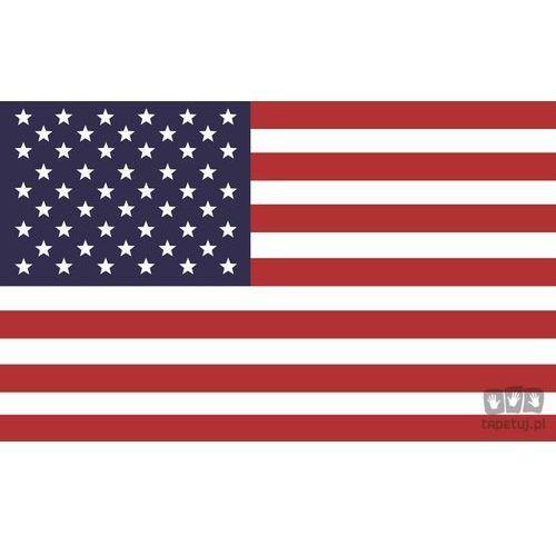 Fototapeta FLAGA USA 479, 479