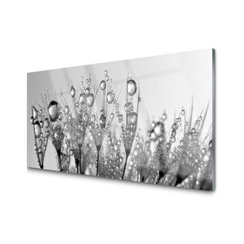 Obraz szklany abstrakcja roślina przyroda marki Tulup.pl