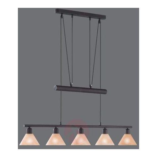 Lampa wisząca Zug, regulowana wysokość, 5-punktowa
