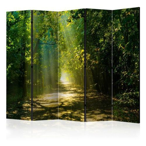 Parawan 5-częściowy - Droga w słońcu II [Room Dividers]