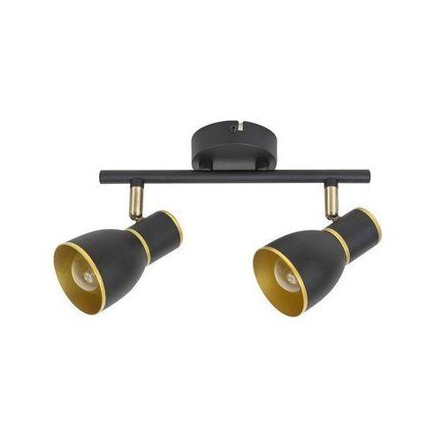 - oświetlenie punktowe sufitowe 2xe14/40w/230v marki Rabalux