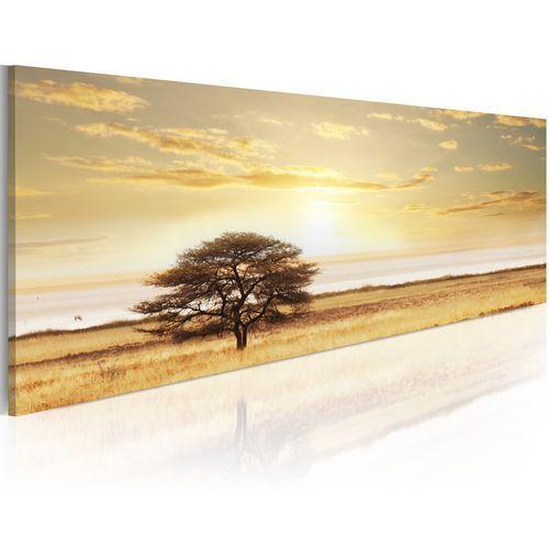 Obraz - Lonely tree on savannah