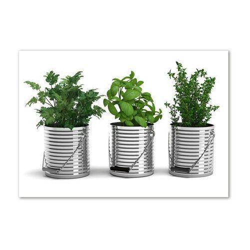 Wallmuralia.pl Foto obraz akryl aromatyczne rośliny