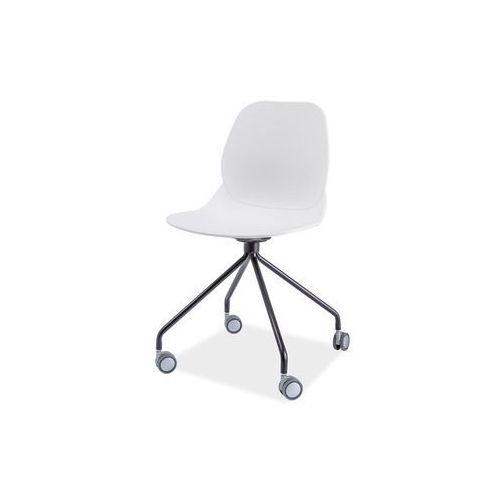 Fotel obrotowy, krzesło biurowe alfio white marki Signal