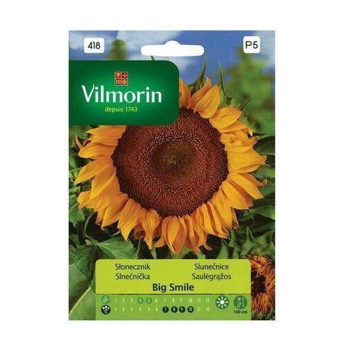 Vilmorin Słonecznik big smile nasiona tradycyjne 0.5 g