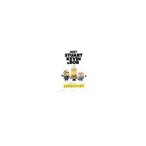 Minionki Jestem z głupcami - plakat (5050574505840)
